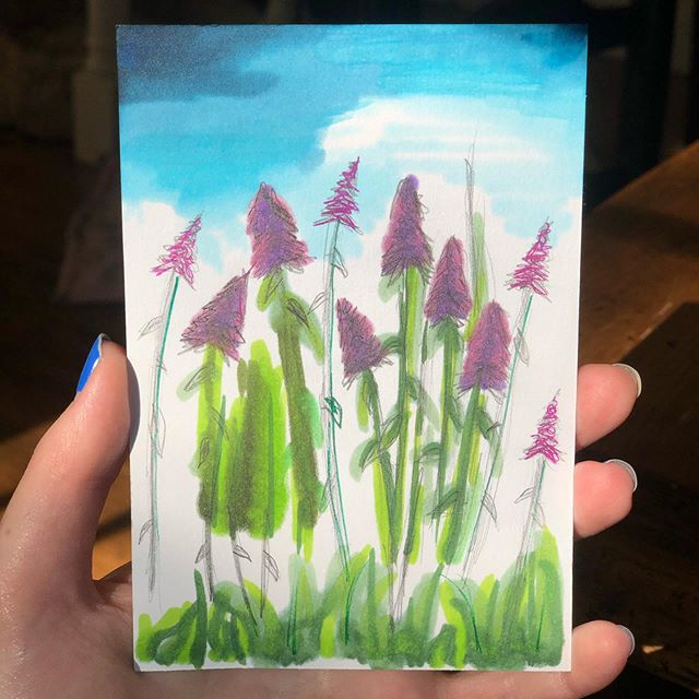 Quick outdoor sketch with copic markers. Plus they bled through the paper and made a nice reverse side too! #art #markers #copicmarkers #copic #flowers #drawing