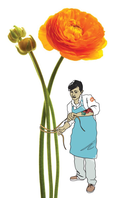 Euroskills-florist.jpg