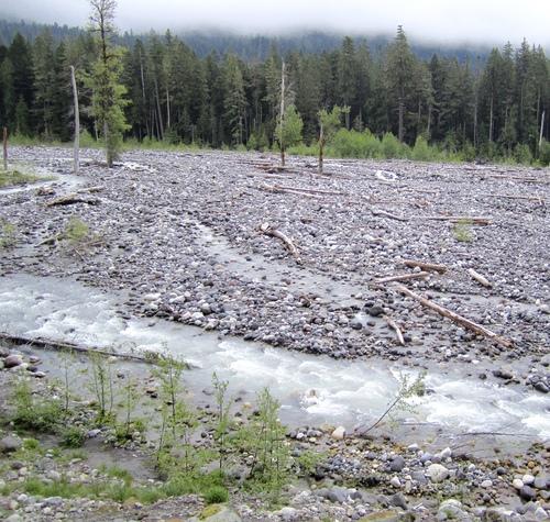 Nisqually River,  Mt Rainier National Park, Washington State