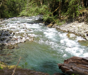 Skokomish River,  Staircase, Olympic National Park, Washington State