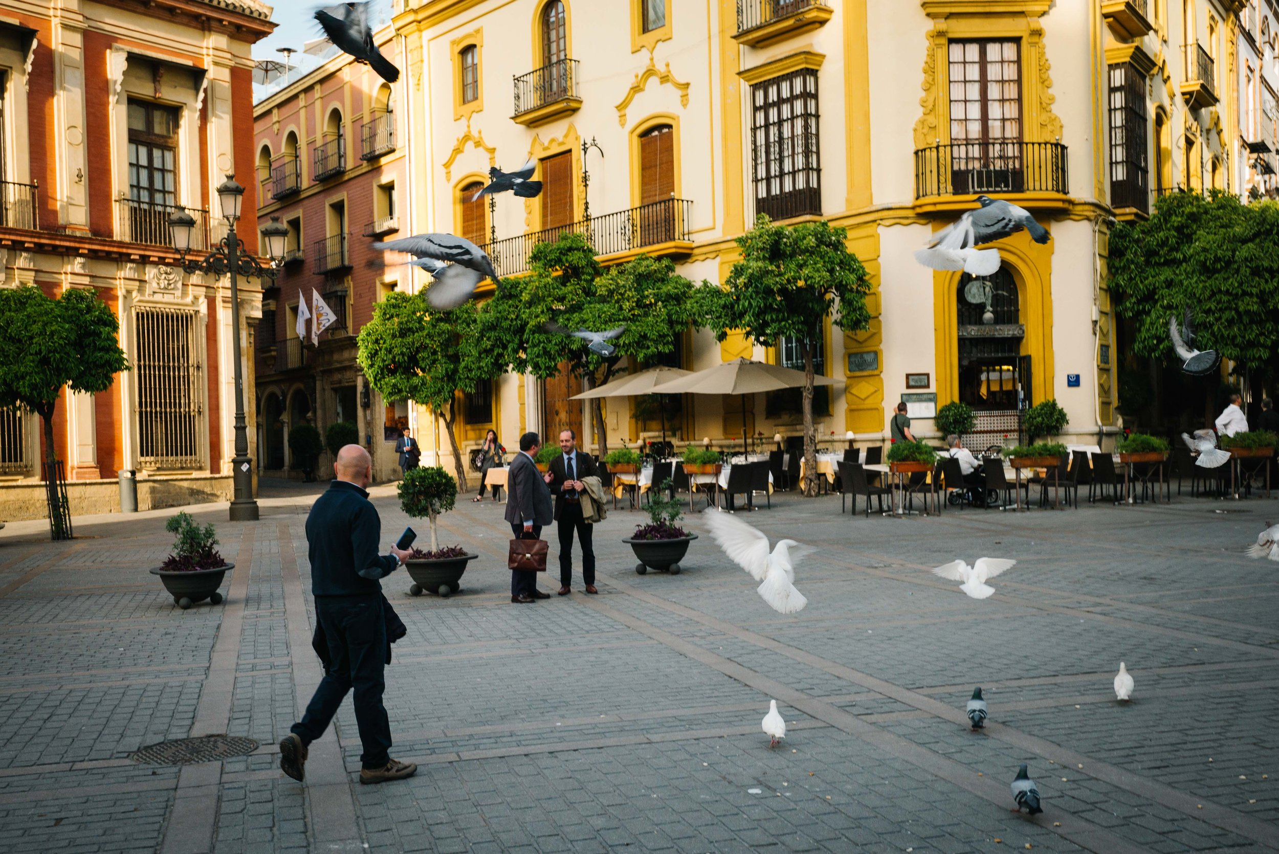 Plaza del Triunfo, Seville. Spain. 2017.