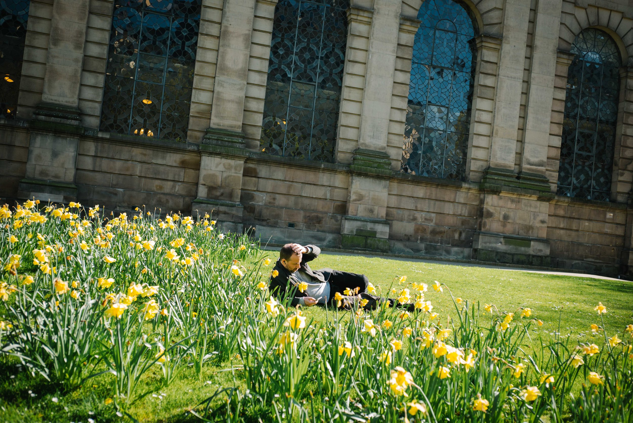 A gentleman relaxes by the daffodils - Clifford Darby 2017