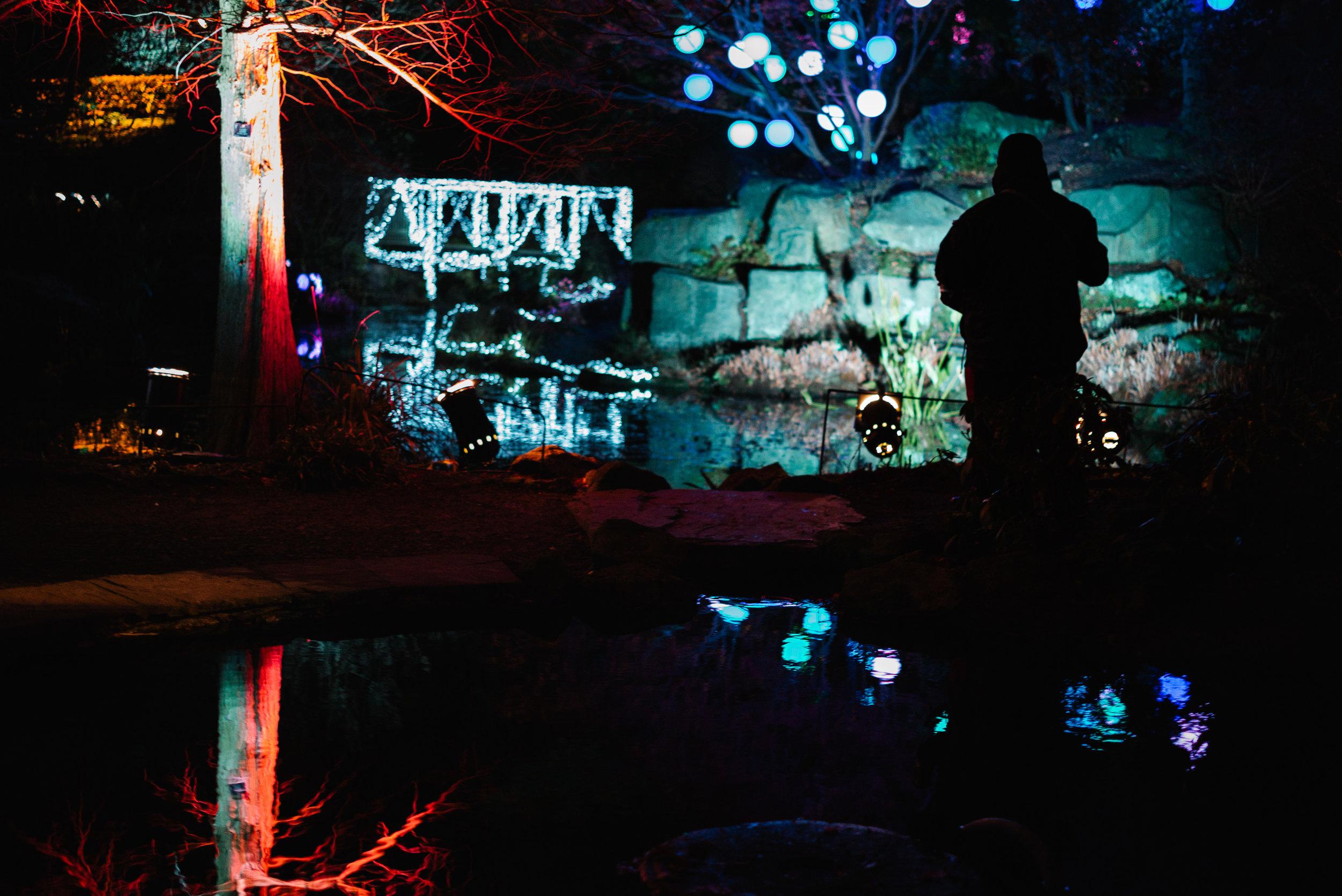 Birmingham Botanical Gardens - Clifford Darby 2017