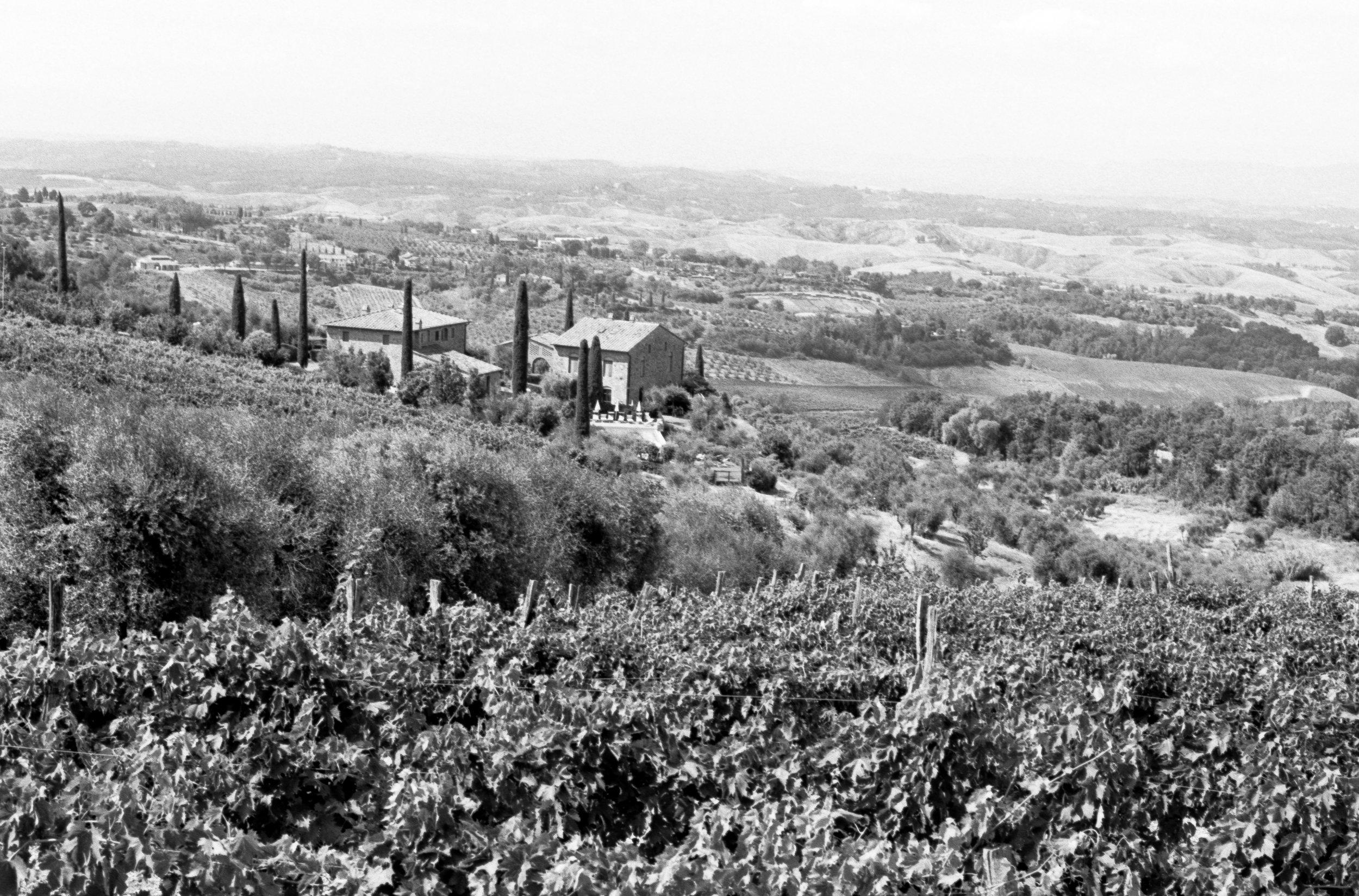 The view from Scipione-Podere Moricci, Montaione. Italy. 2019.