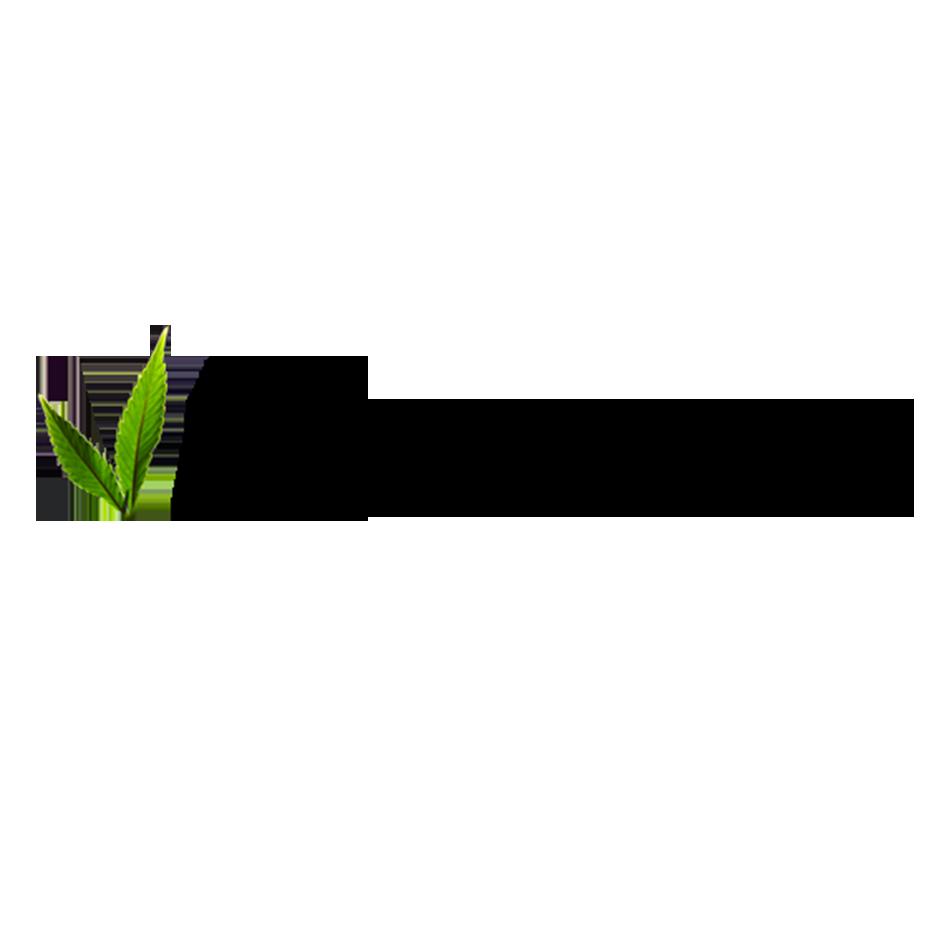 Produits 100% organics pour l'entretien des locs
