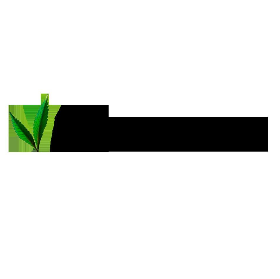 Produits 100% naturels, vegan à base d'huile de chanvre organique pour l'entretien des locs. #HealthyLocJourney    www.vitalocs.com