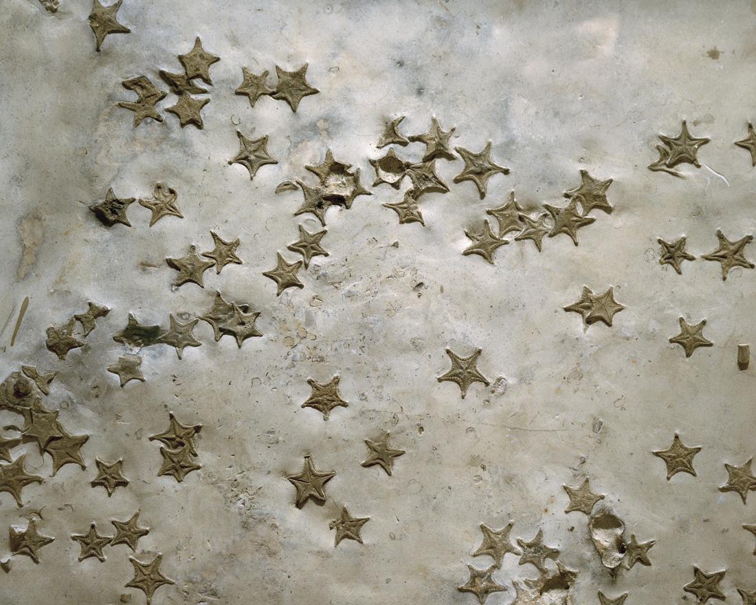 NHM_Stars_PRINT.jpg