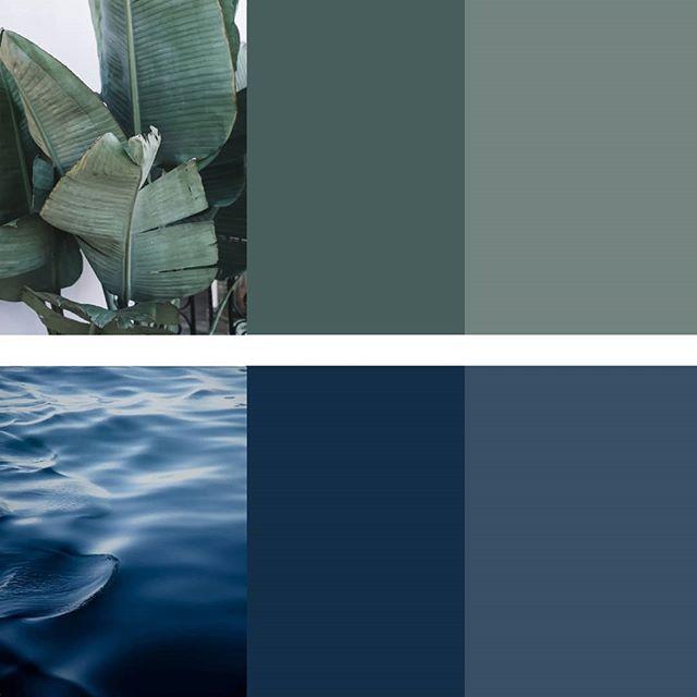 colour palette 4/4 _ leaf & deep blue . . . . . . #colourpalette #inspiredbynature  #ethicallymadewithlove #ethicaldesign #naturalcolor #nature #smallbusiness #myri_studio #myriamrigaud #smallbiz #nomaddesigner #nomaddesign #womenentrepreneur #girlboss #designermaker #shecreates #custommade #locallymade #livinginasuitcase #travellingtheworld #ss19trends  #slowlife #slowliving #wherewomencreate