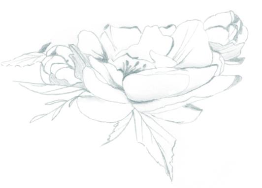 amalfi-coast-film-wedding-photographer-lace-luce-peony-hand-drawn-sketch.jpg