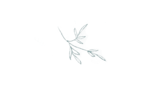 amalfi-coast-film-wedding-photographer-lace-luce-hand-drawn-flowers-sketch-small-branches.png