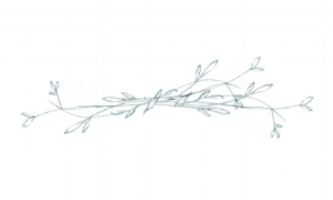 amalfi-coast-film-wedding-photographer-lace-luce-hand-drawn-flowers-sketch_blog-post-3.jpg