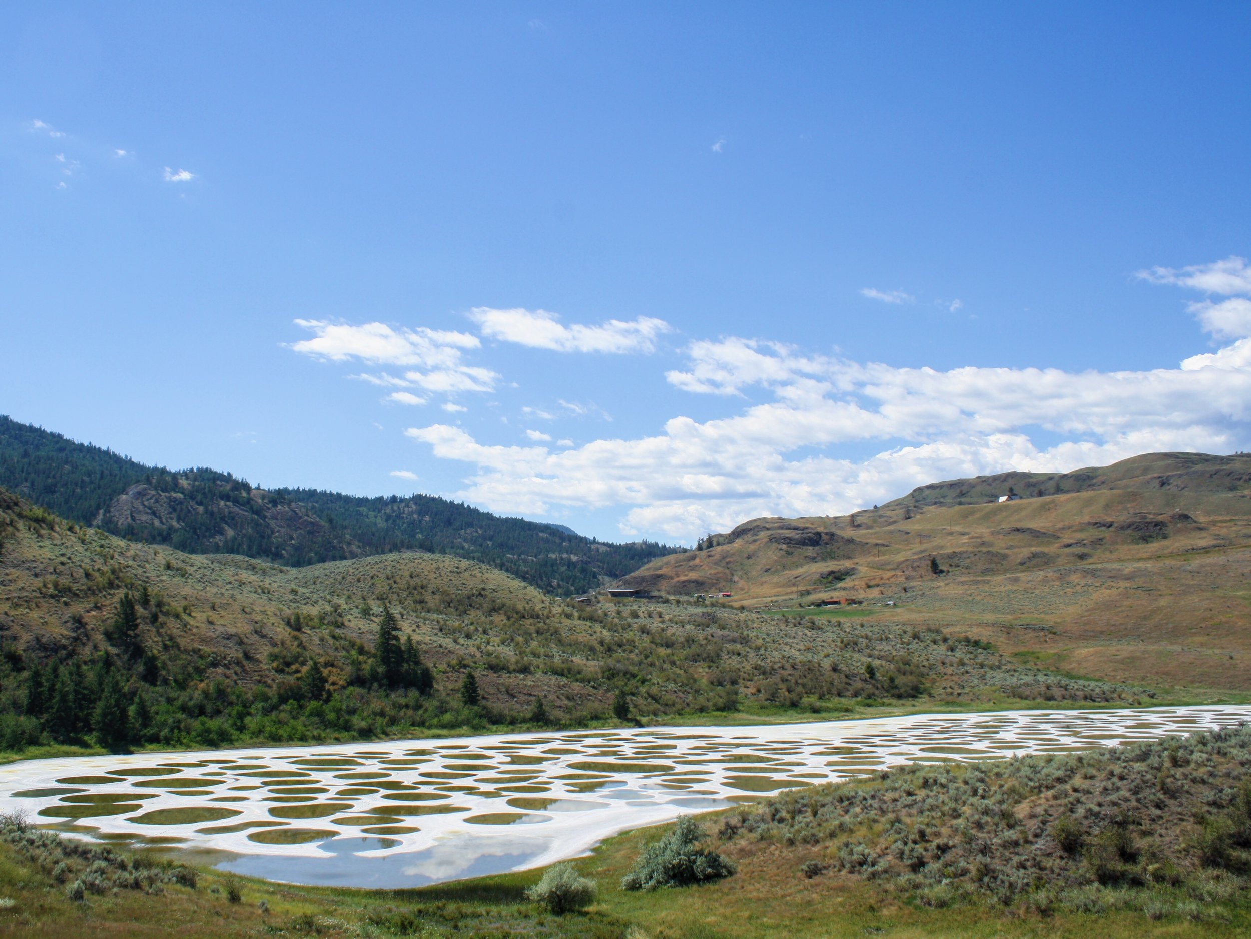 Spotted Lake,Osoyoos