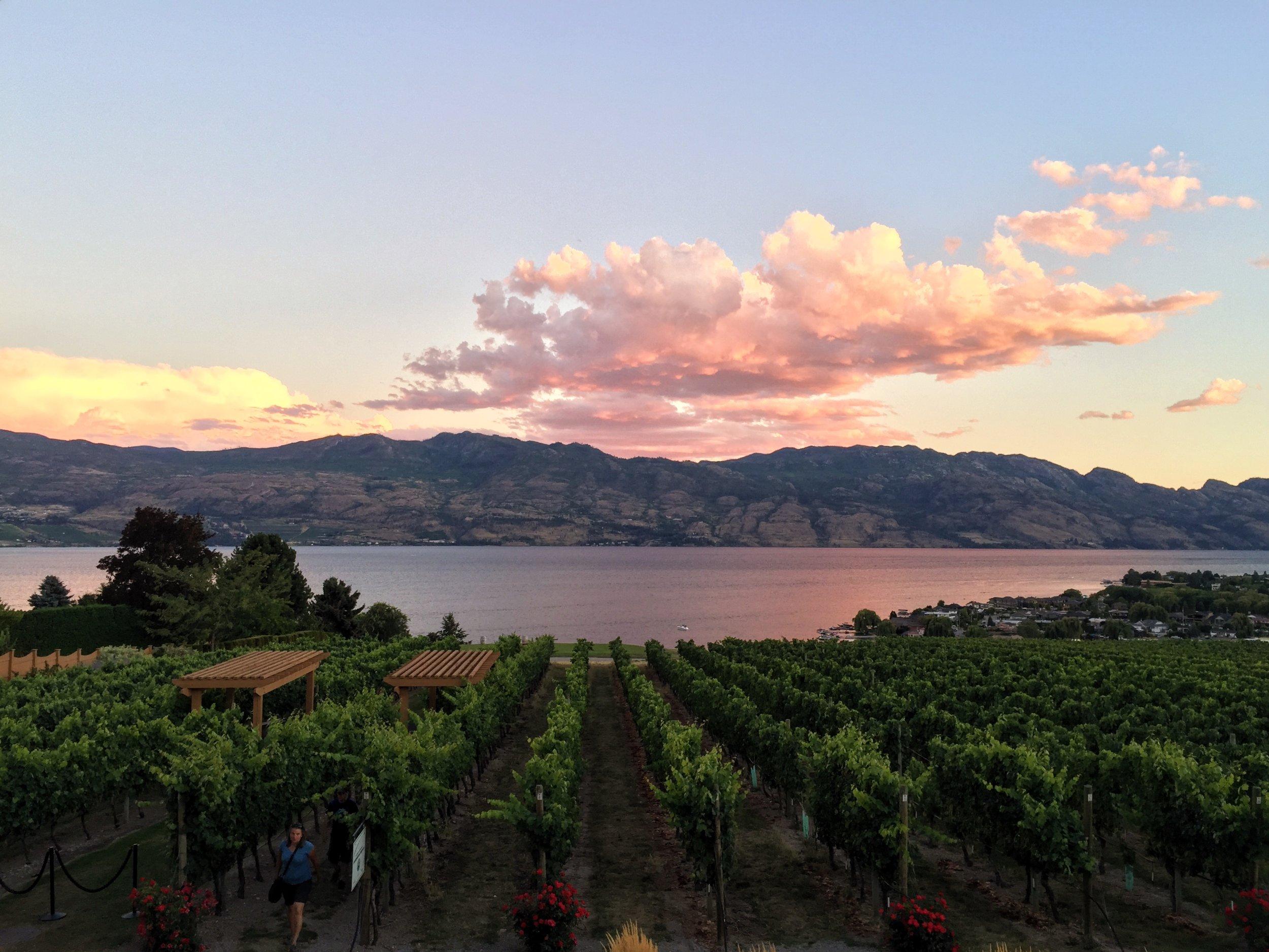 Quails' Gate Winery,Okanagan Valley, Kelowna