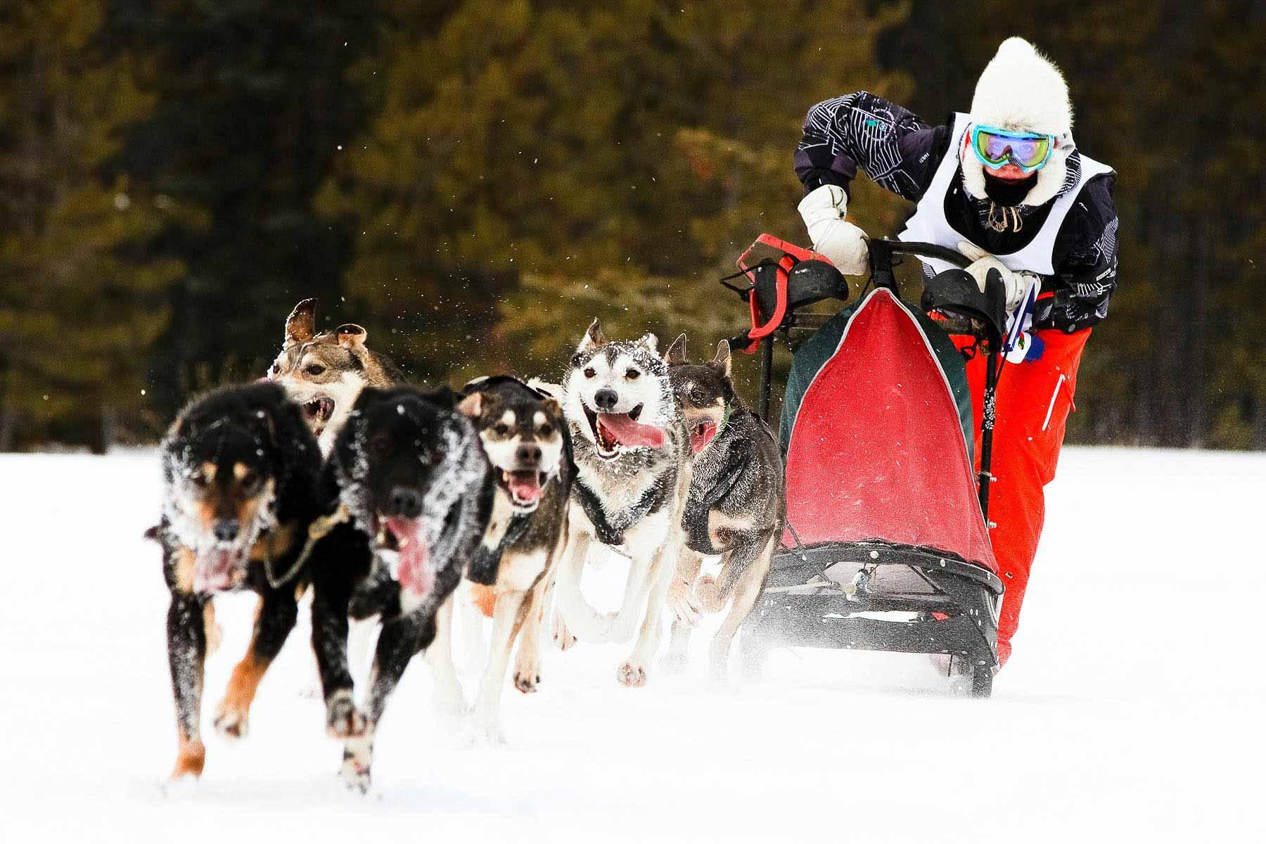 084-105-2012-ArcticWinterGames-0307-07942.jpg