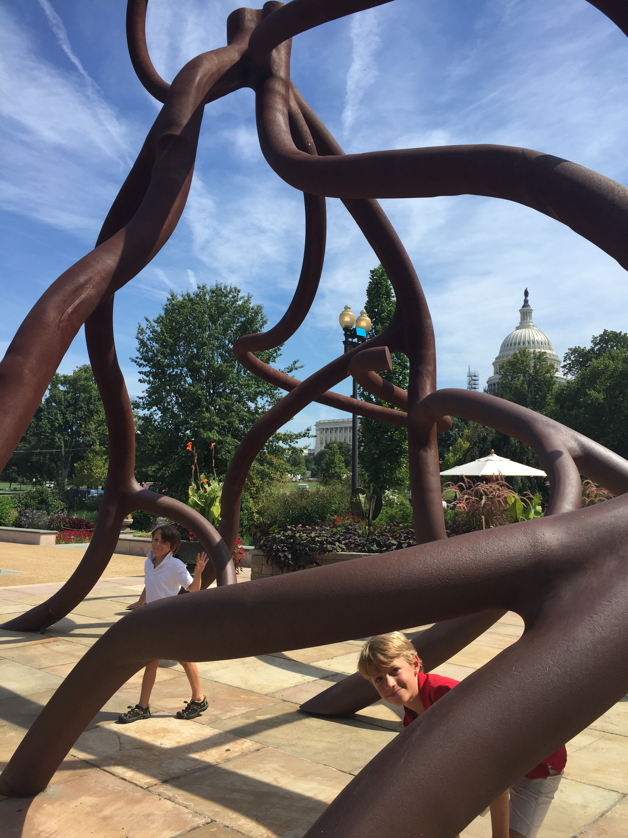 the Root sculpture in front of the Botanic Garden. See the Capitol peeking out in the background?