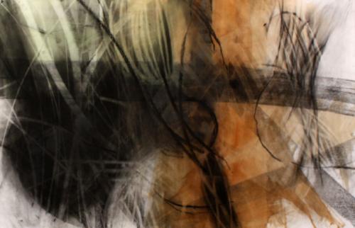 "Symbiosis 16     2010, charcoal, Alabama soil pigment,hide glue on paper     21"" x 51"""