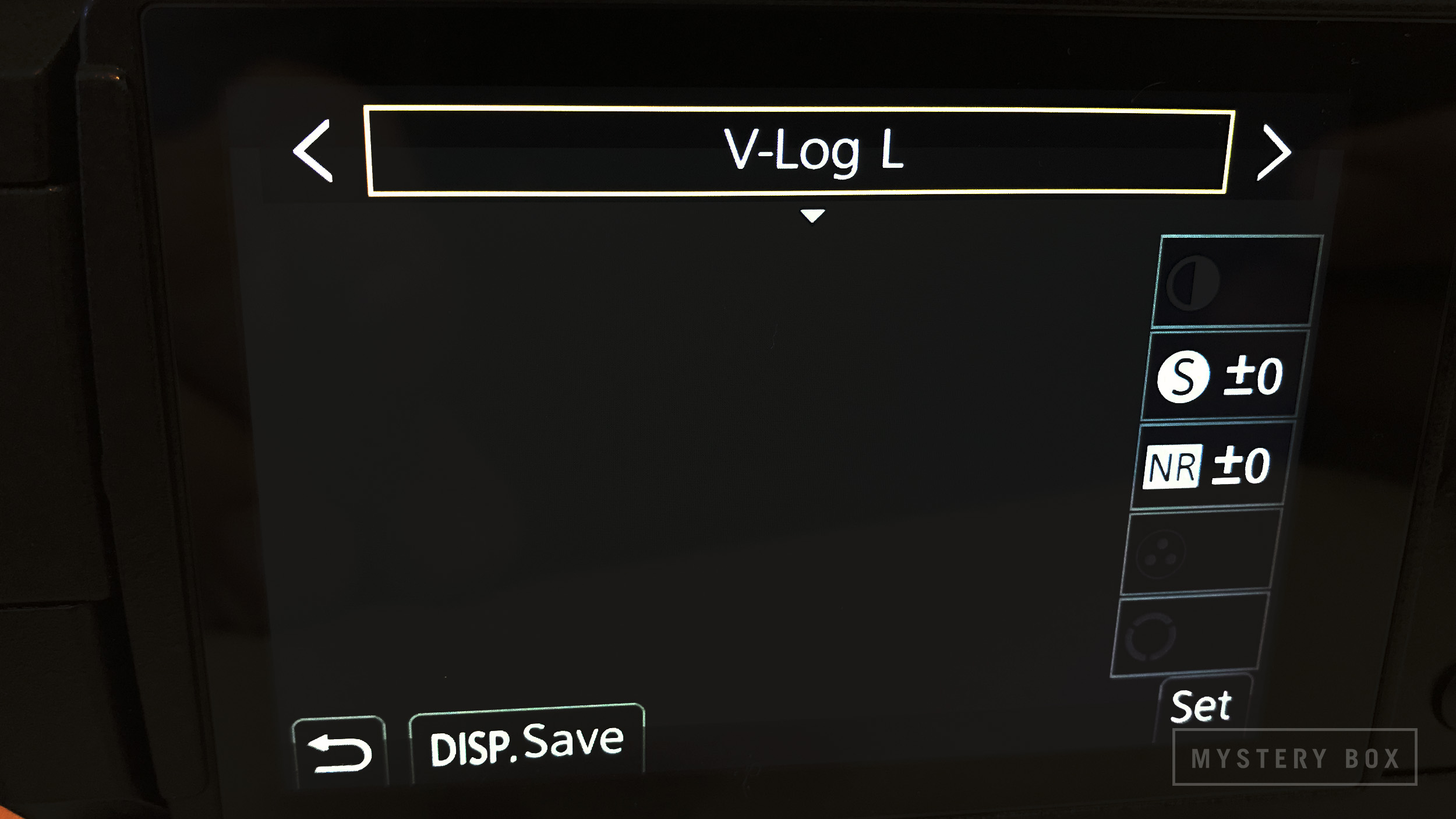 - Set the GH5S to use V-Log L color science by setting the Picture Style to V-Log L in the Picture Style menu (Menu -> Motion Picture -> Picture Style)