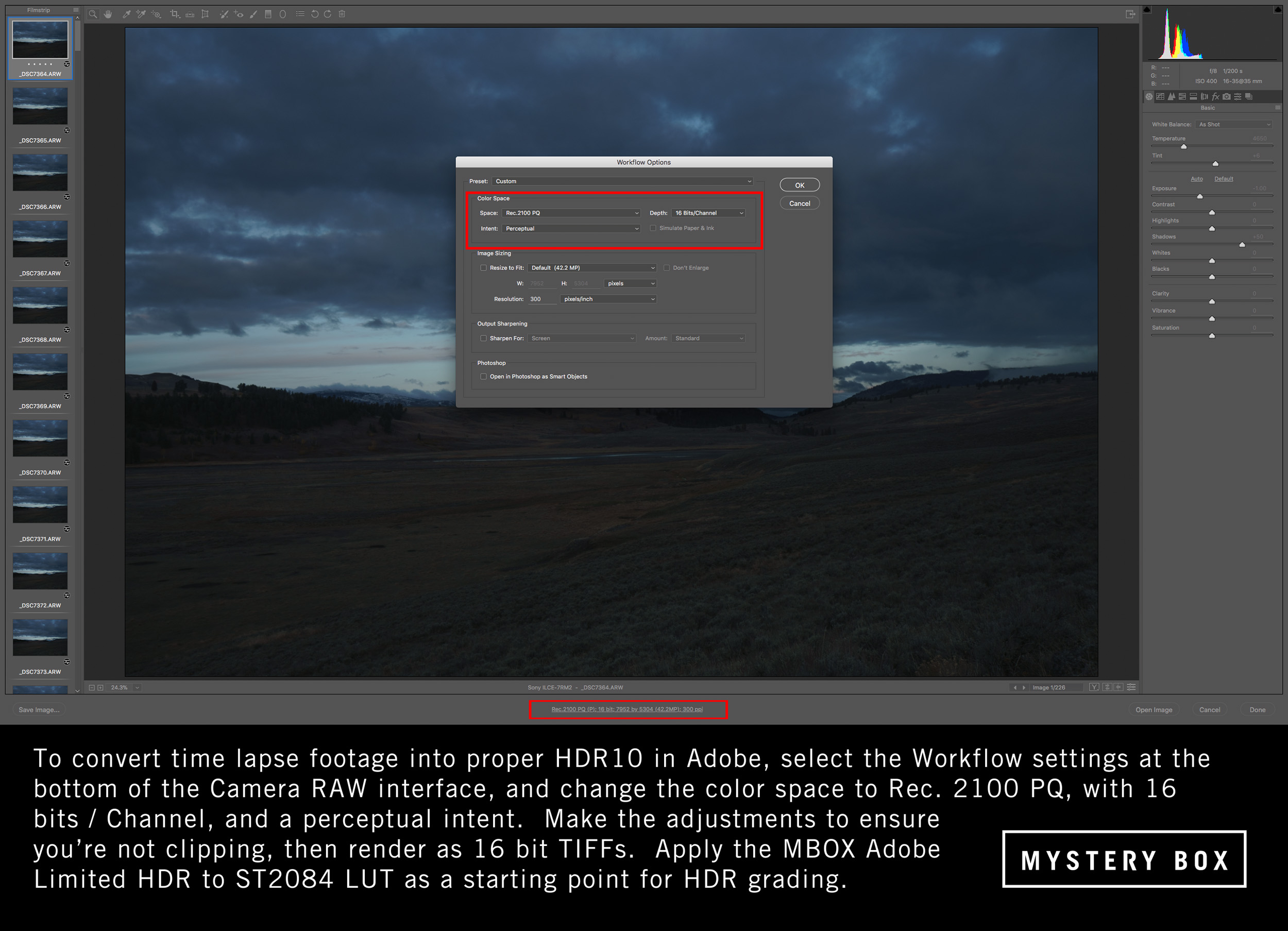 Adobe Camera RAW interpretation for HDR10