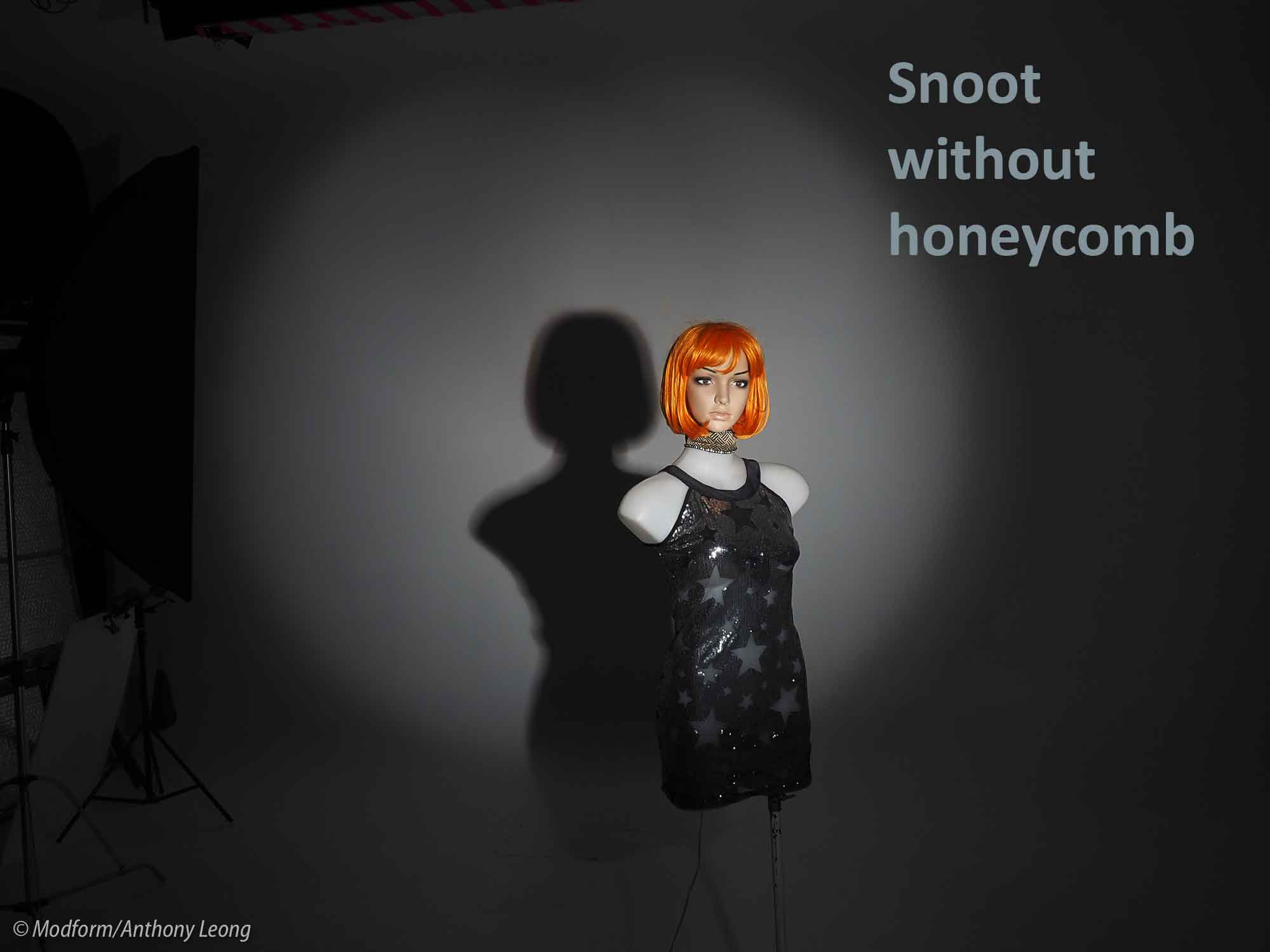 Snoot+no-Honeycomb240719-1web.jpg