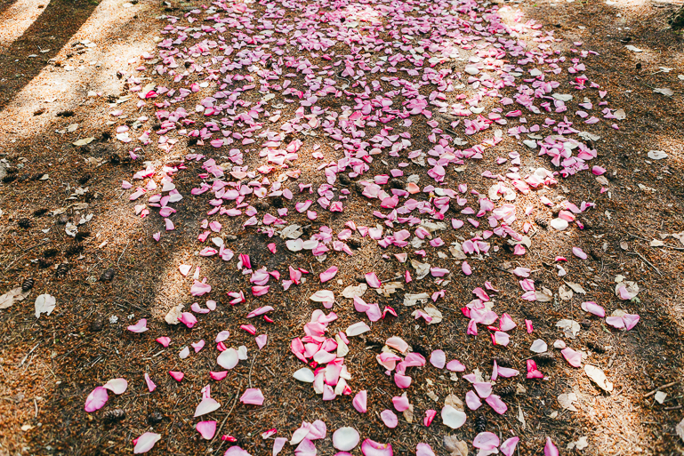 kitsap-state-park-wedding-0046.jpg