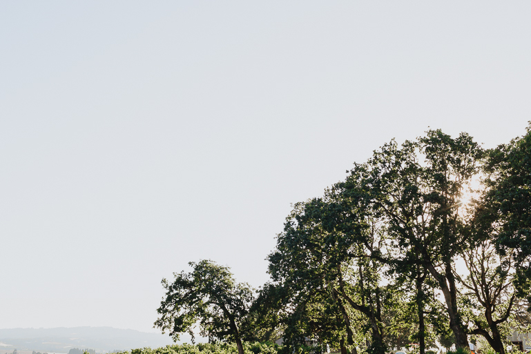 scholls-valley-lodge-wedding-0003.jpg