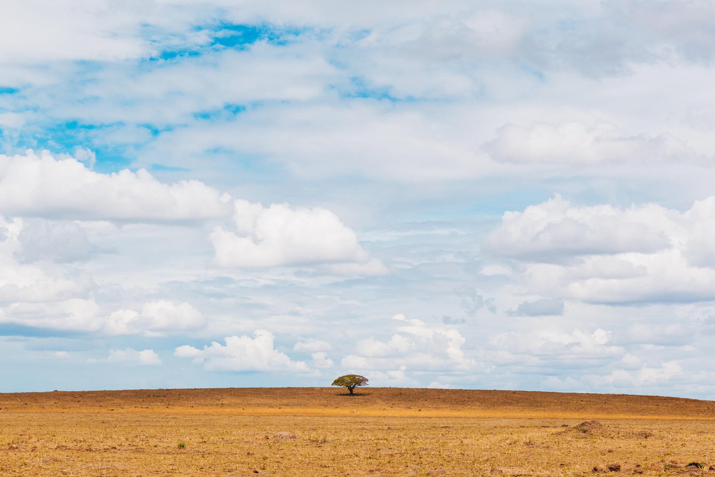 arrive-kenya-kristawelchcreative-00099.jpg