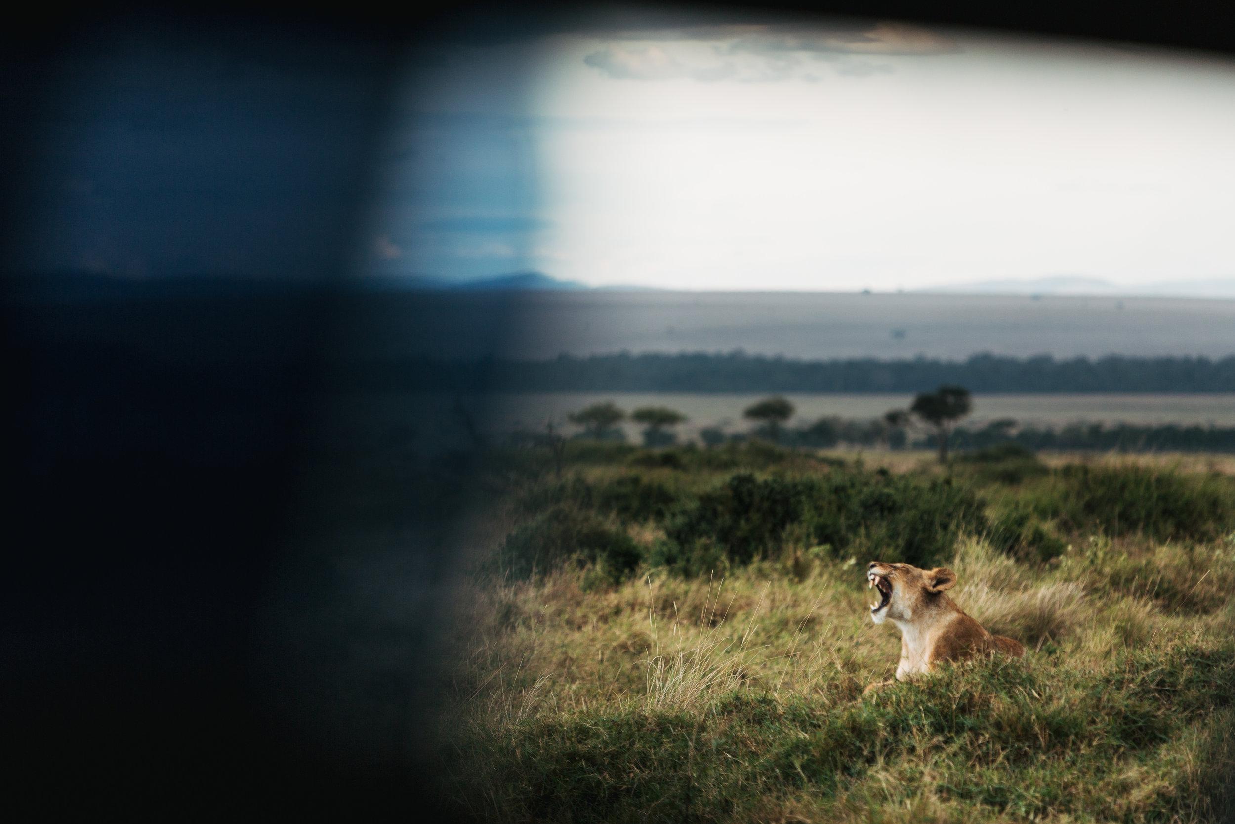 arrive-kenya-kristawelchcreative-00107.jpg