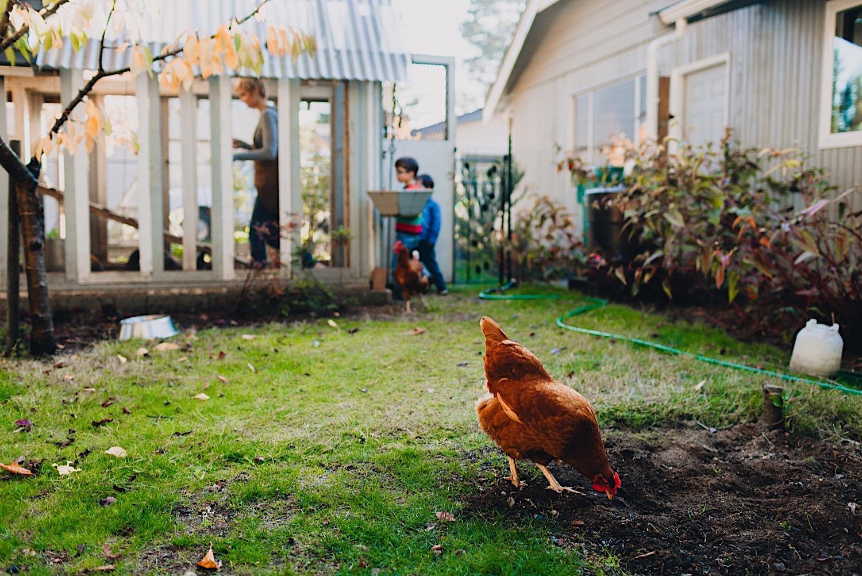 04_Photos_relaxed_Family_Fun_Photography_Seattle_Shoreline_documentary_Child.jpg