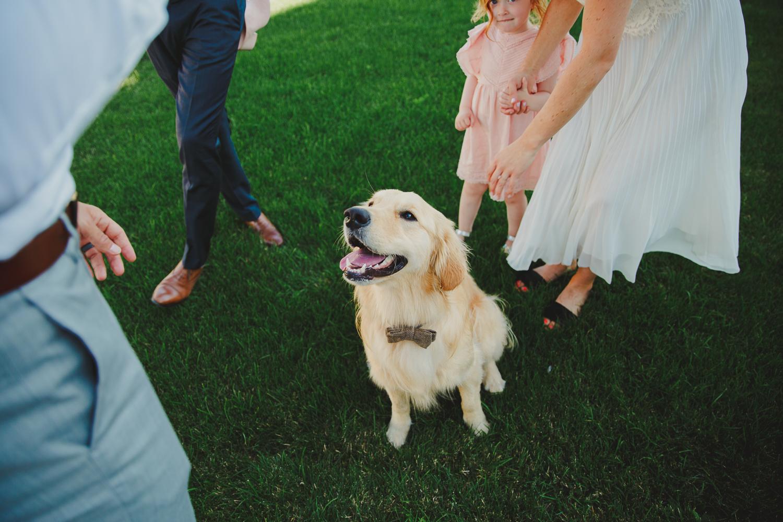 Seattle Courthouse Wedding Photos-ClaireMatt-KristaWelchCreative-0014.jpg