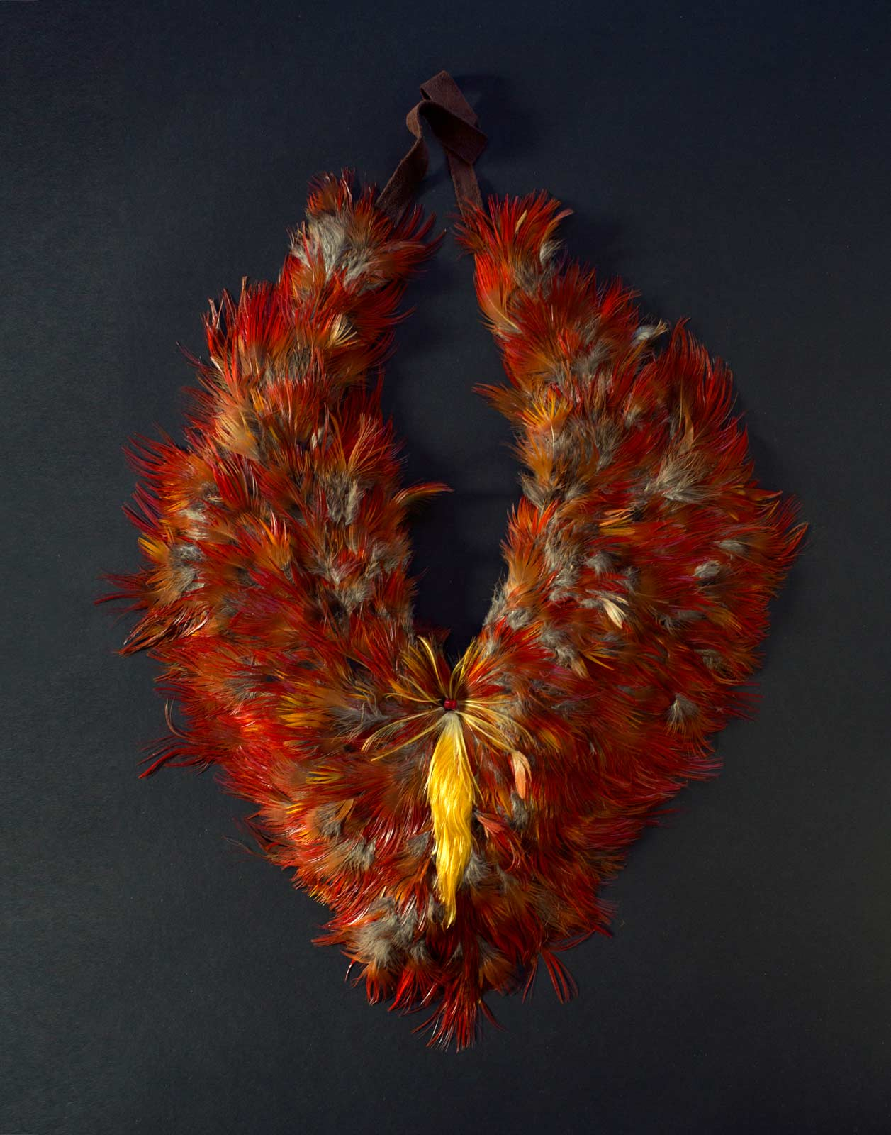 #55/14 of Golden pheasant feathers, 2014. Photograph by Faria Raji, courtesy of The Nartonis Project, 2015.