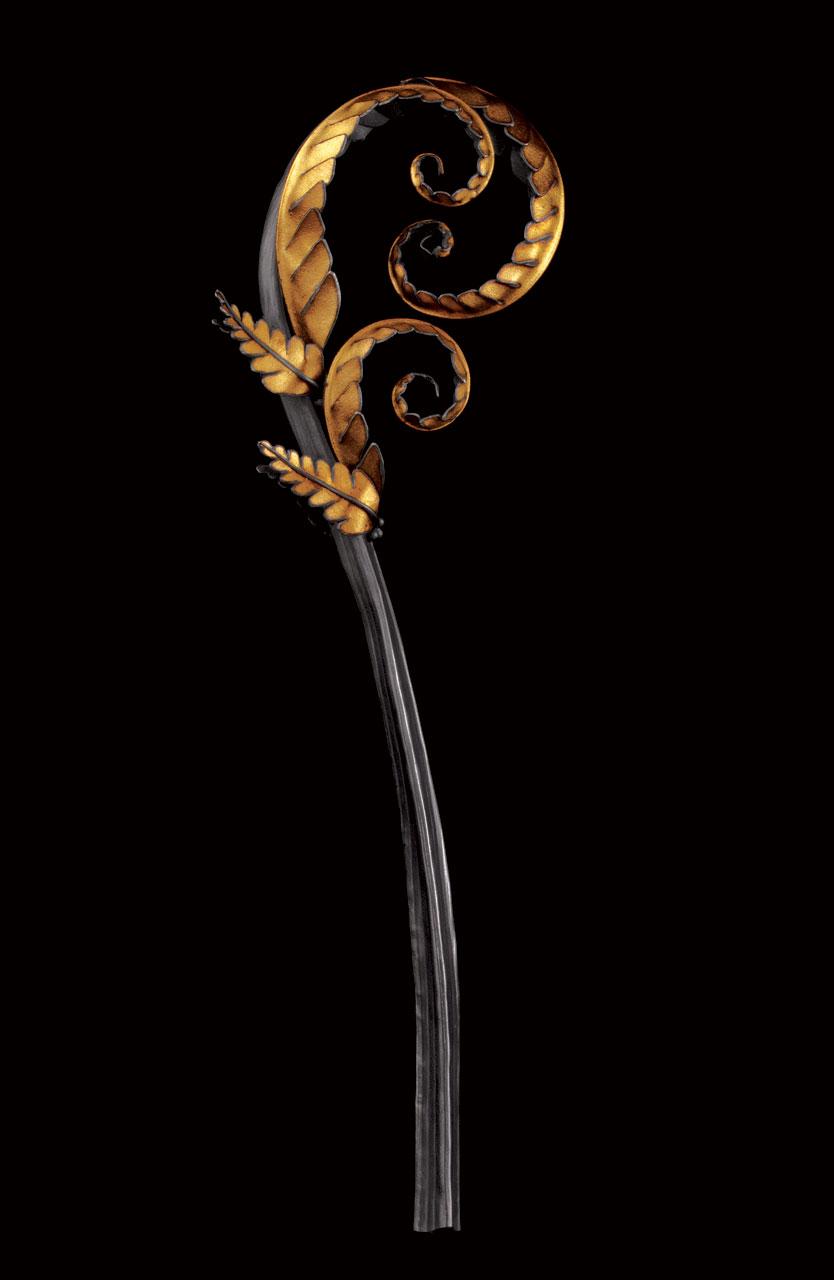 Signs_KINGHORN-fiddlehead-fern.jpg