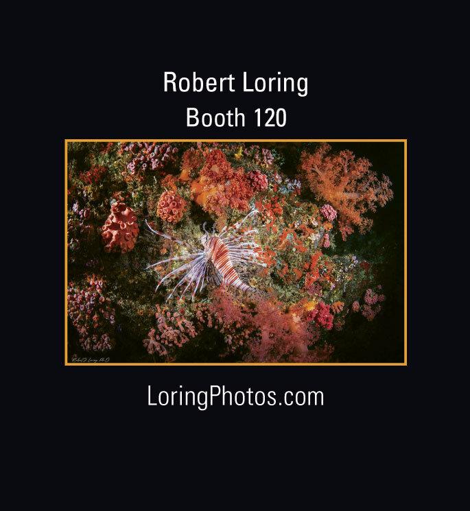 41_3_Robert-Loring-Web.jpg