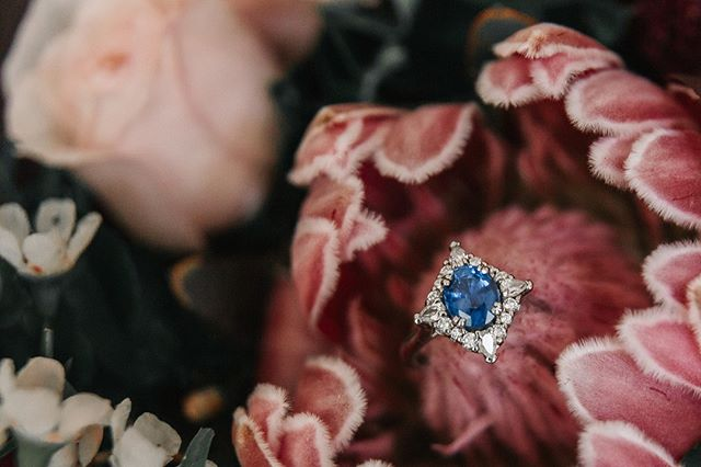 How amazing is this ring! I just love sapphires.  #details #engagementring #ido #love #saphire #weddingphotographer #sydneyweddingphotographer