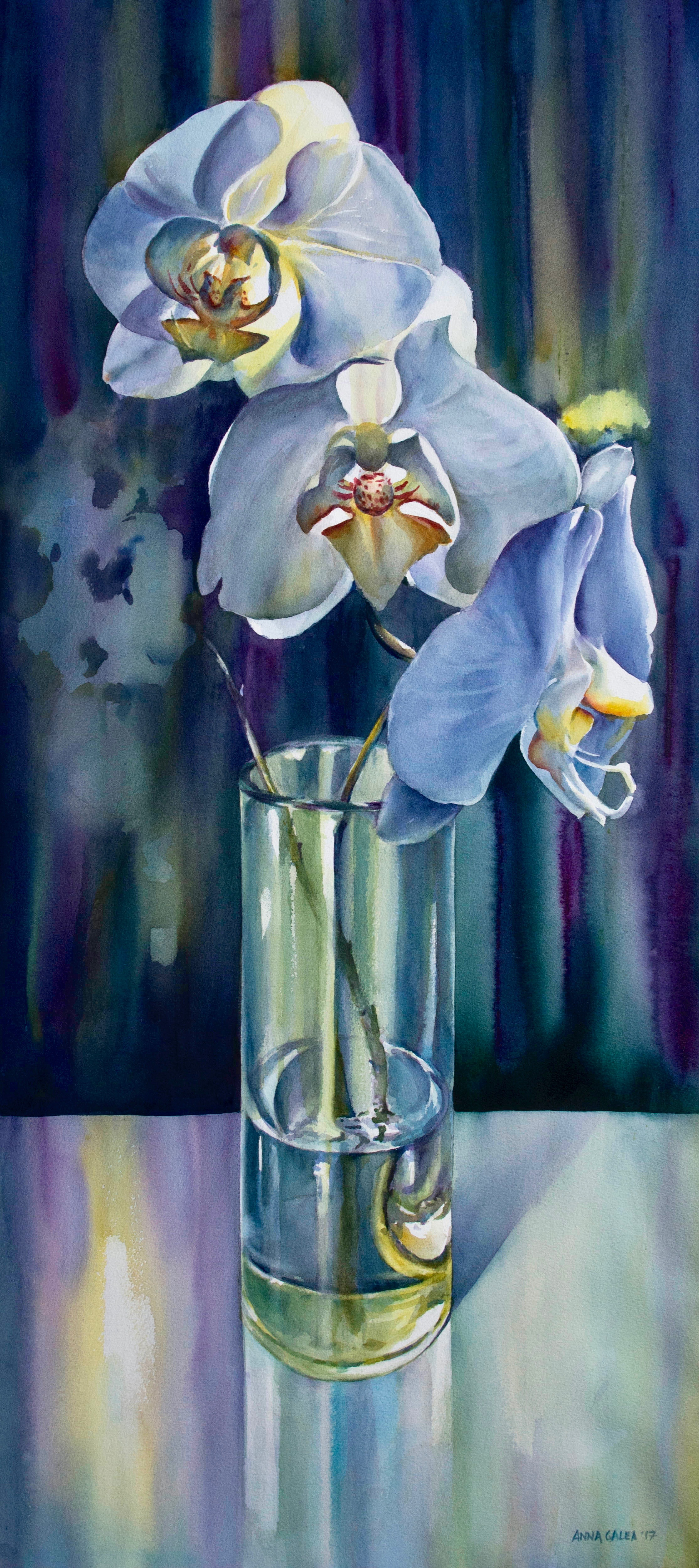 Orchids,  2017, Watercolour, 47 x 21 inches