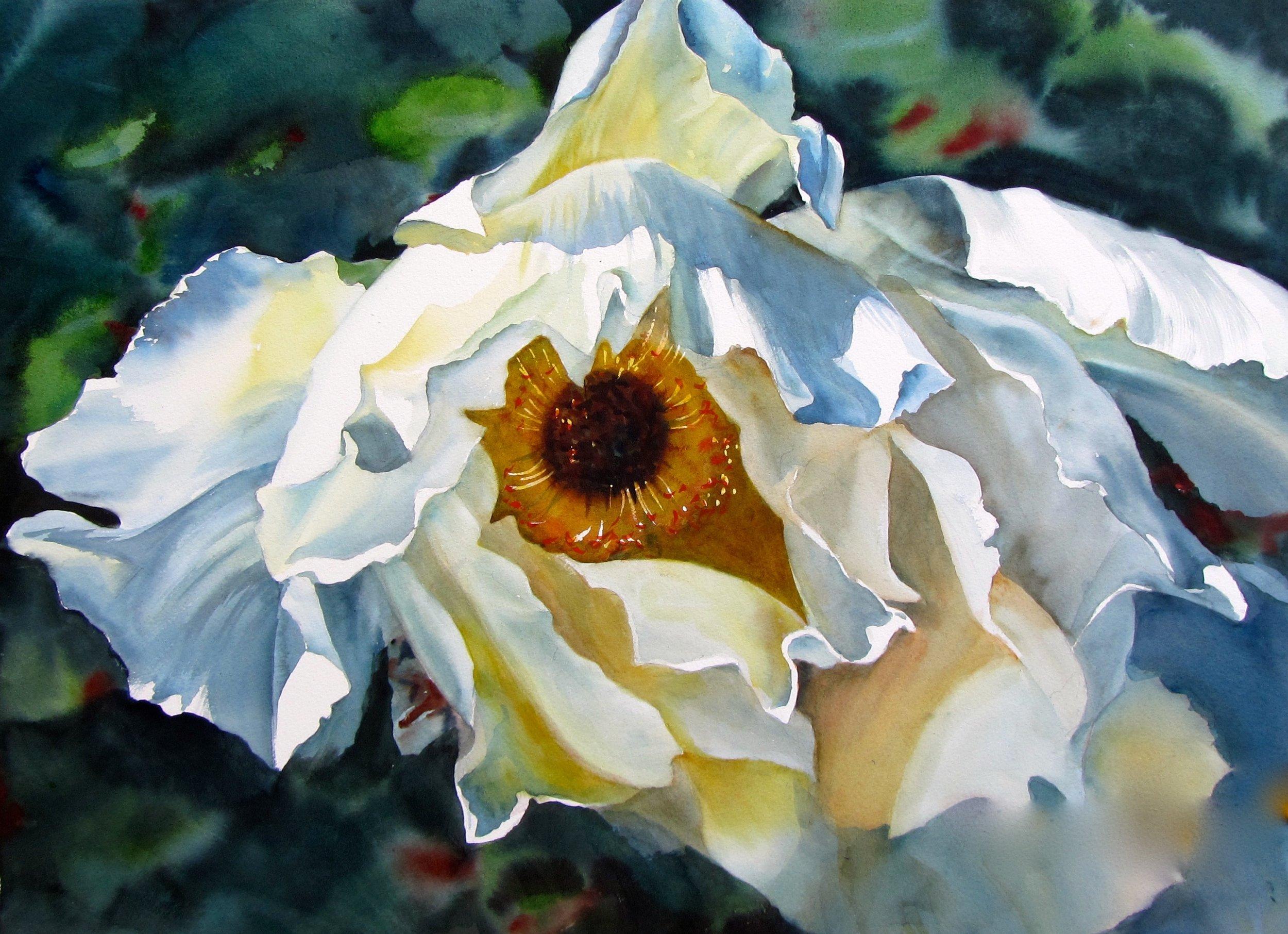 Eyeing You  2014, Watercolour, 52x76cm