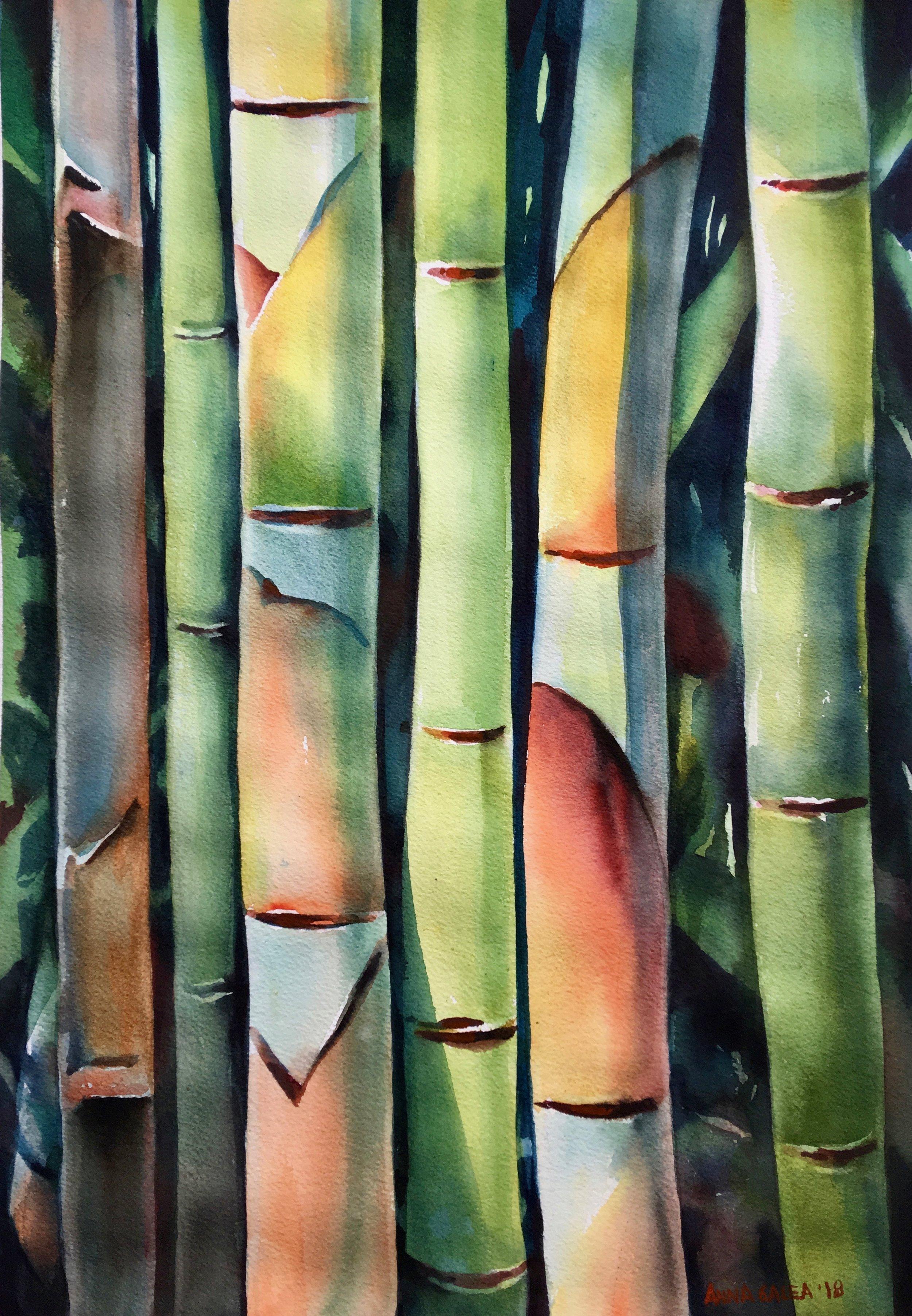 So Bamboo.jpg