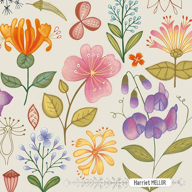After weeks of show follow up and holidays 😀 , getting started on some new designs. Inspired by @victoriajohnsondesign #exploreflorals #flowers #vintage #botanical #illustration #surfacedesign #harrietmellor