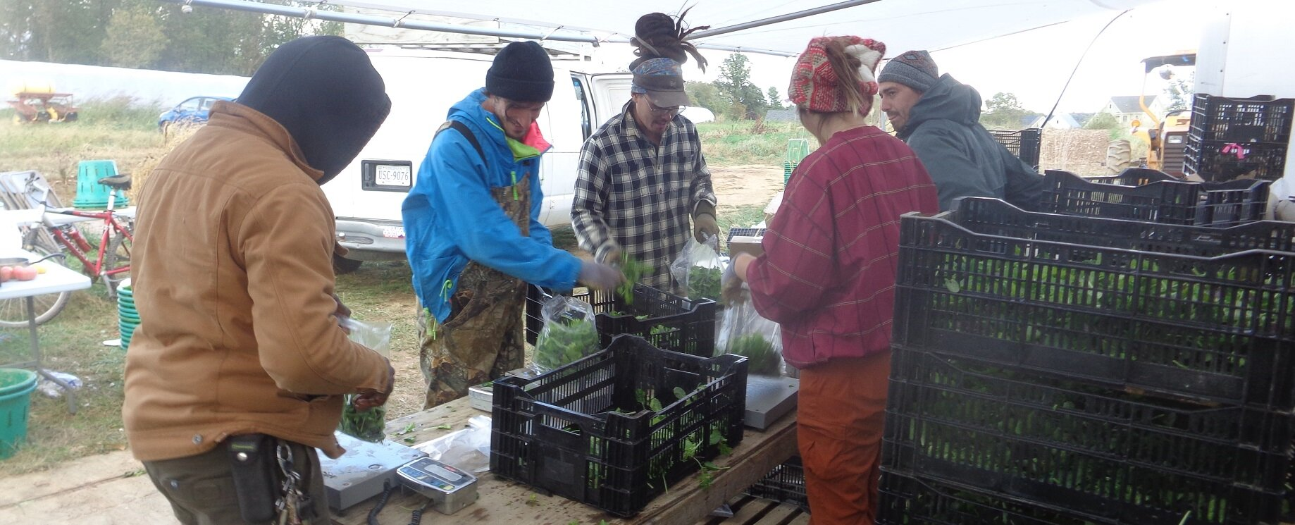 Second Spring Farm Working At Ssf