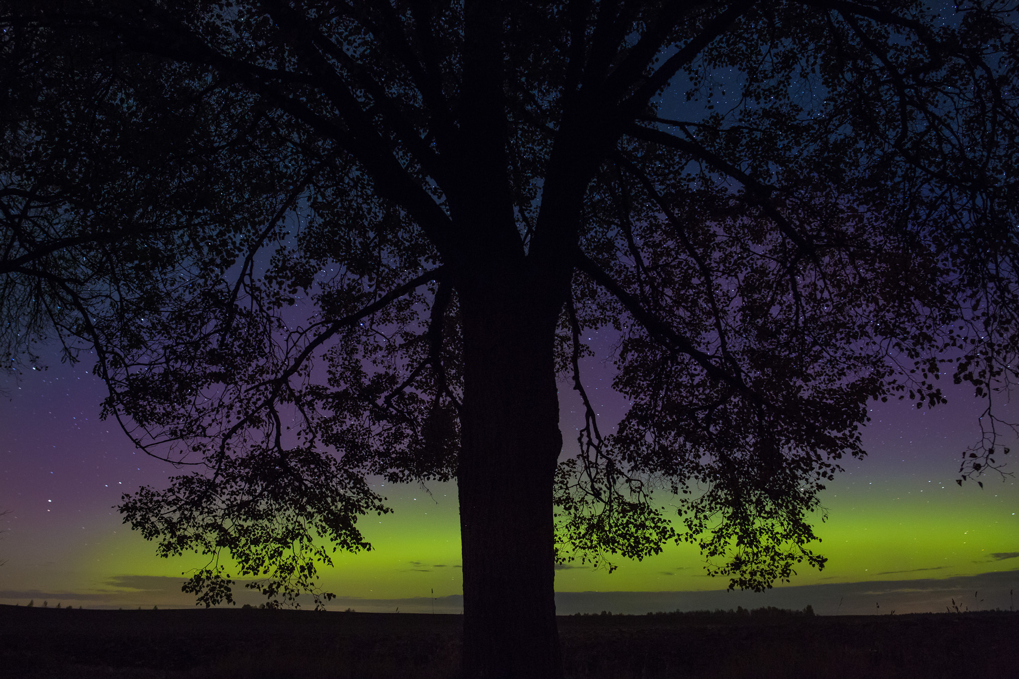 Aurora Borealis in Estonia. October 2012.