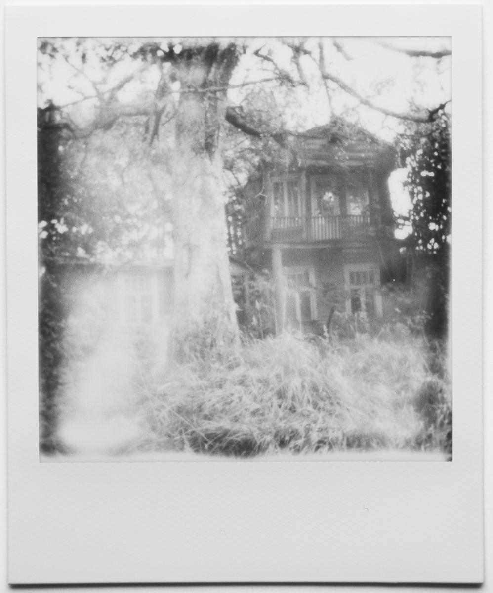 polaroidid-9256.jpg