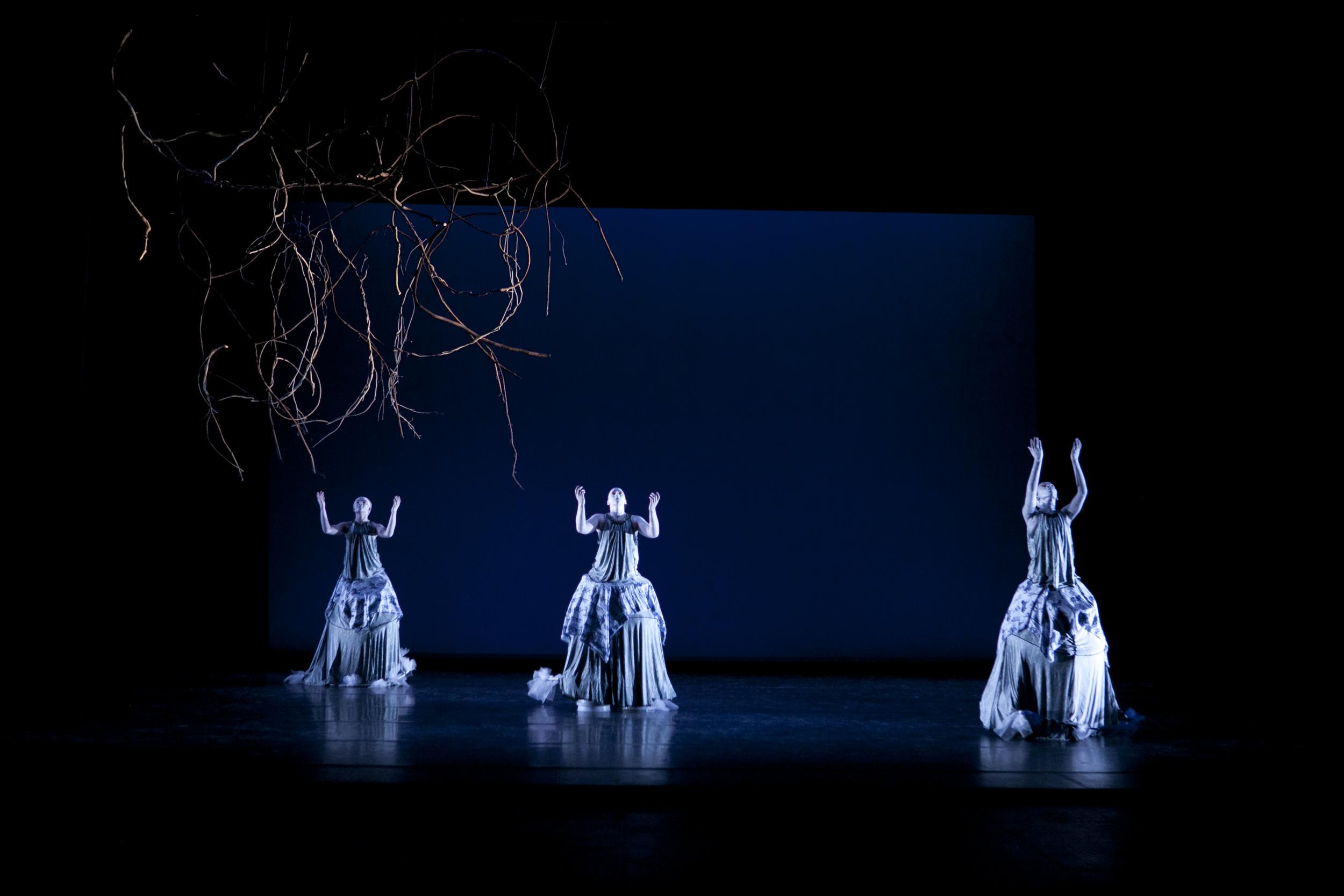 178112_november_dance619.jpg