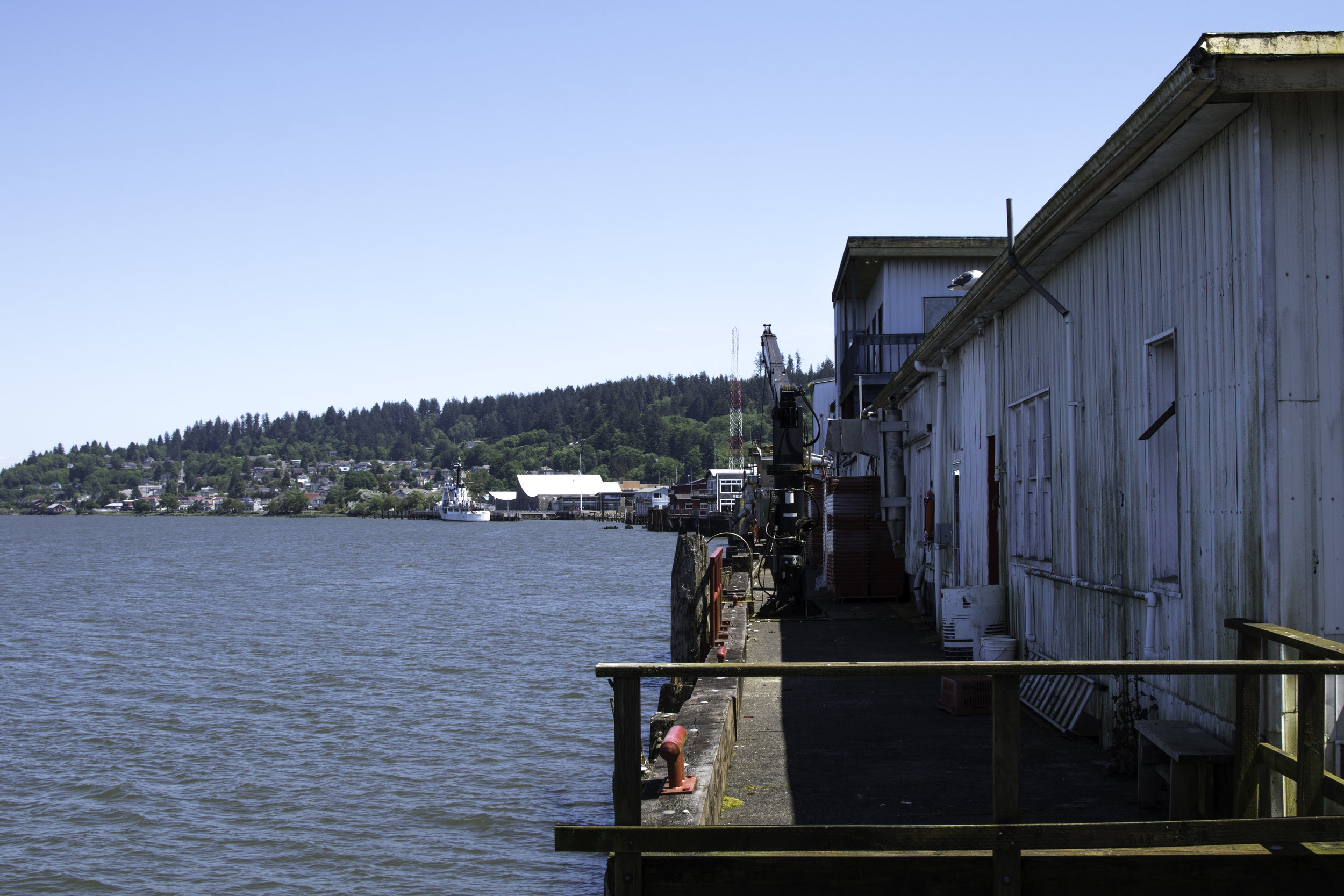 fishing dock.jpg