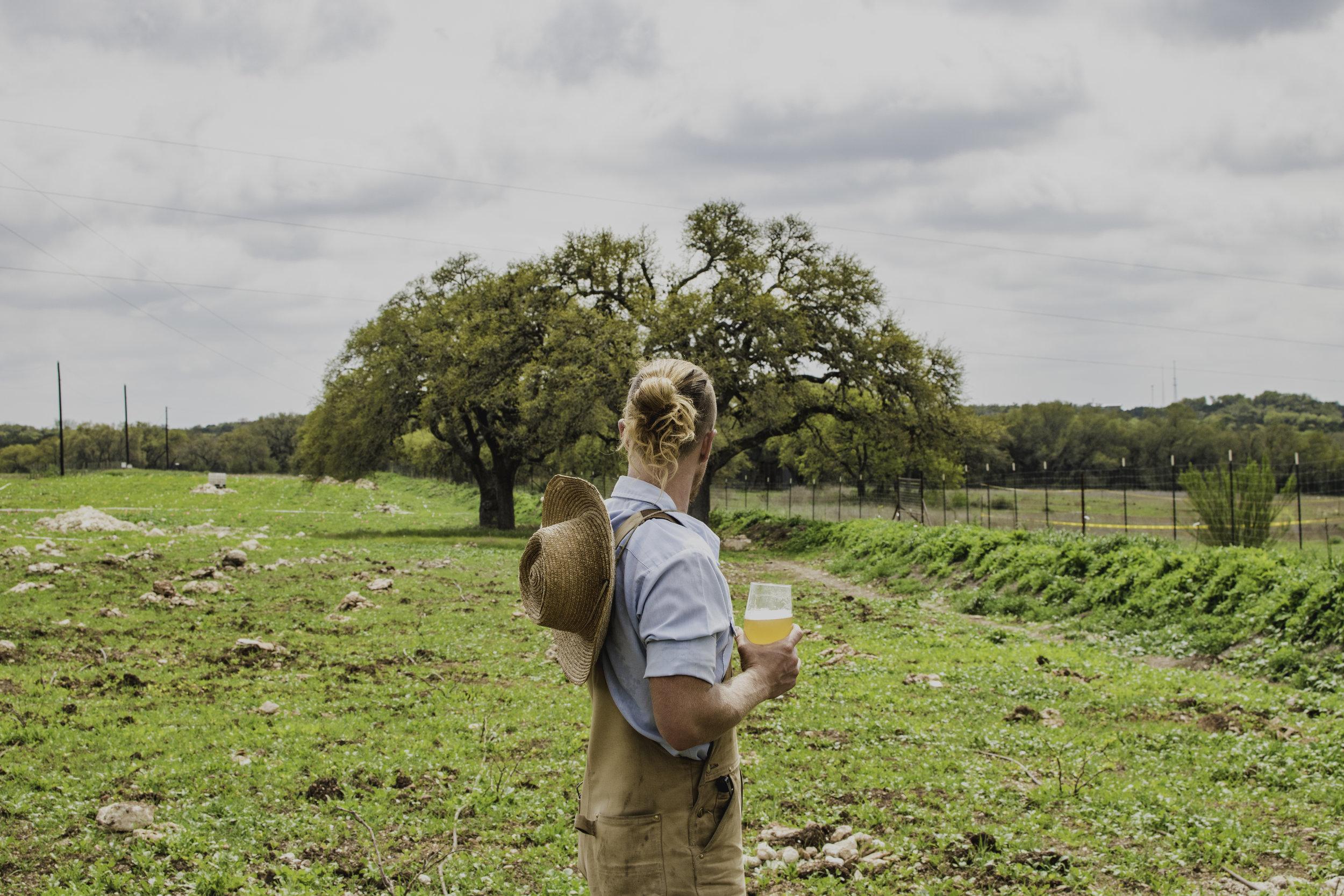 farmer peppy.jpg
