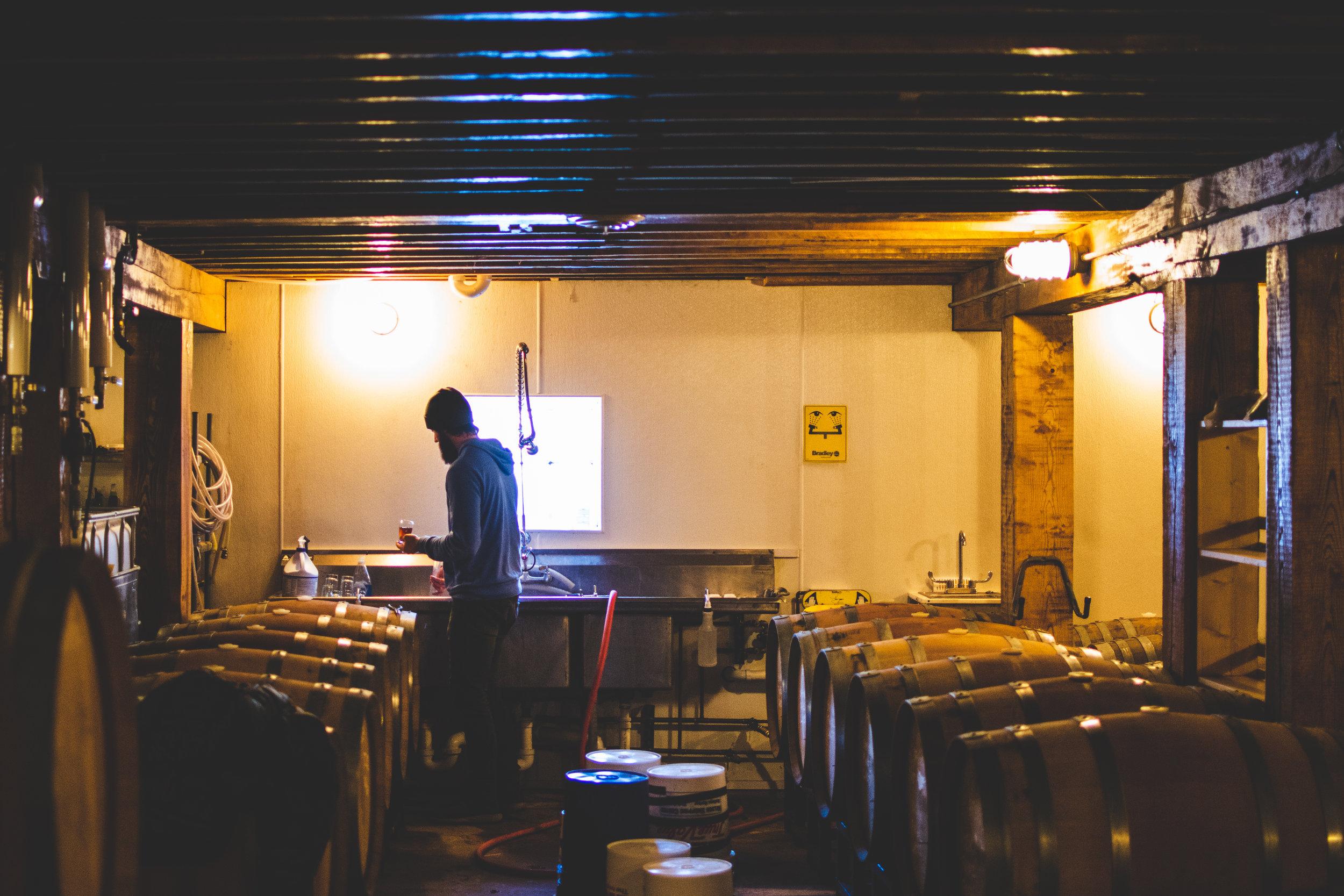 barrel room 4.jpg