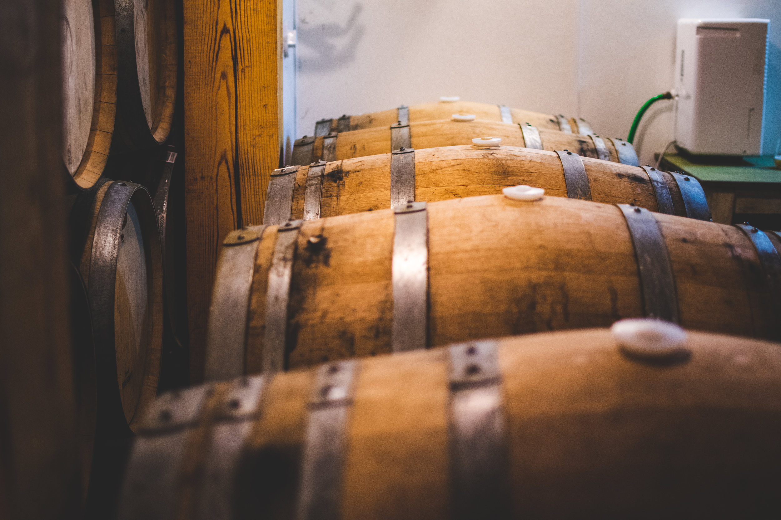 barrel room 3.jpg