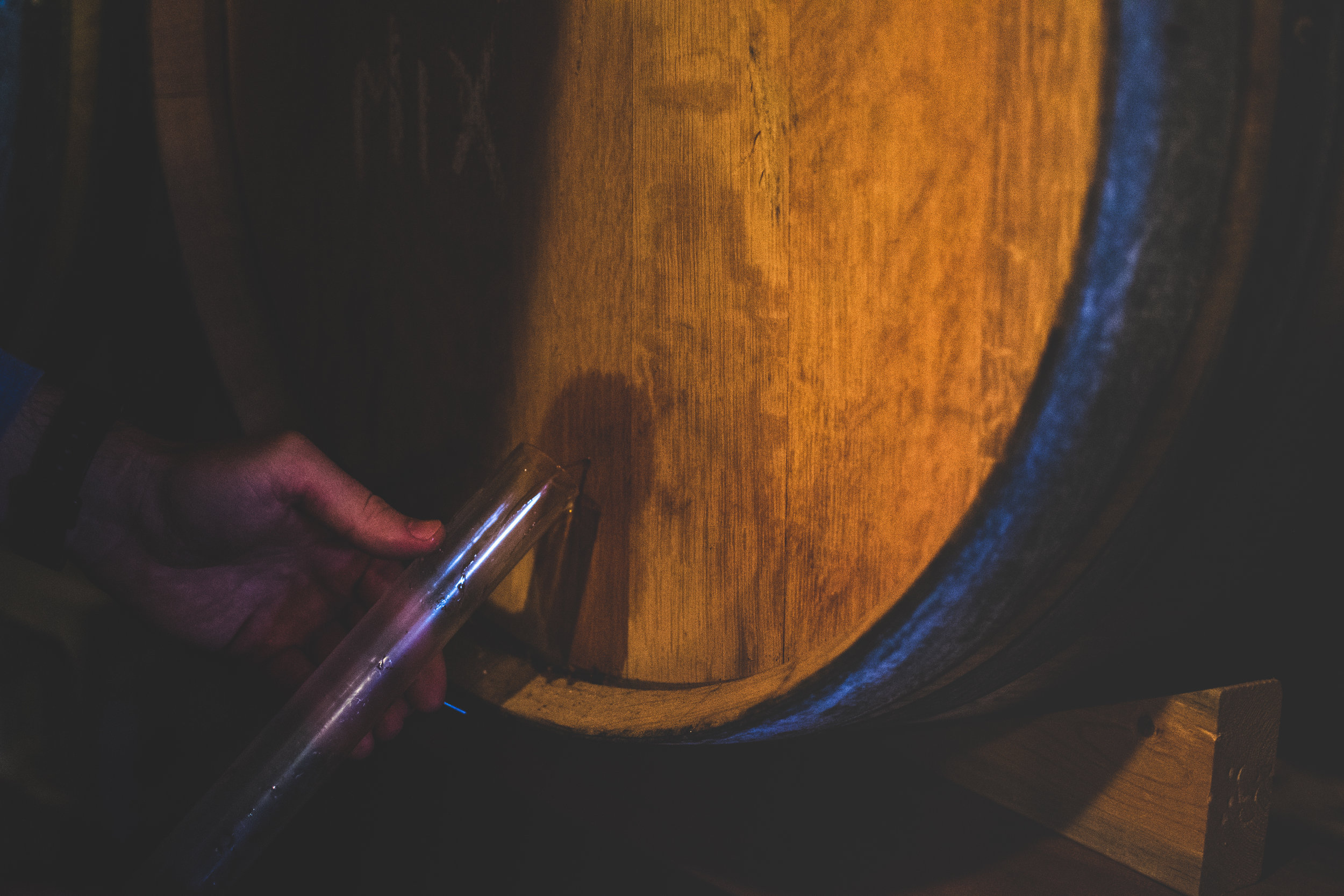 barrel room 6.jpg