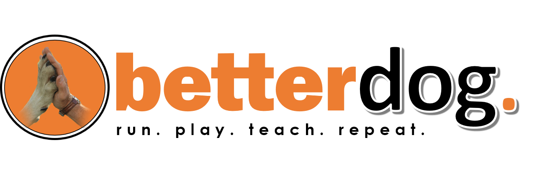betterdog logo concept.png