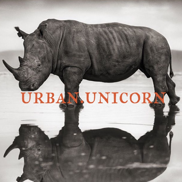 Urban Unicorn.JPG