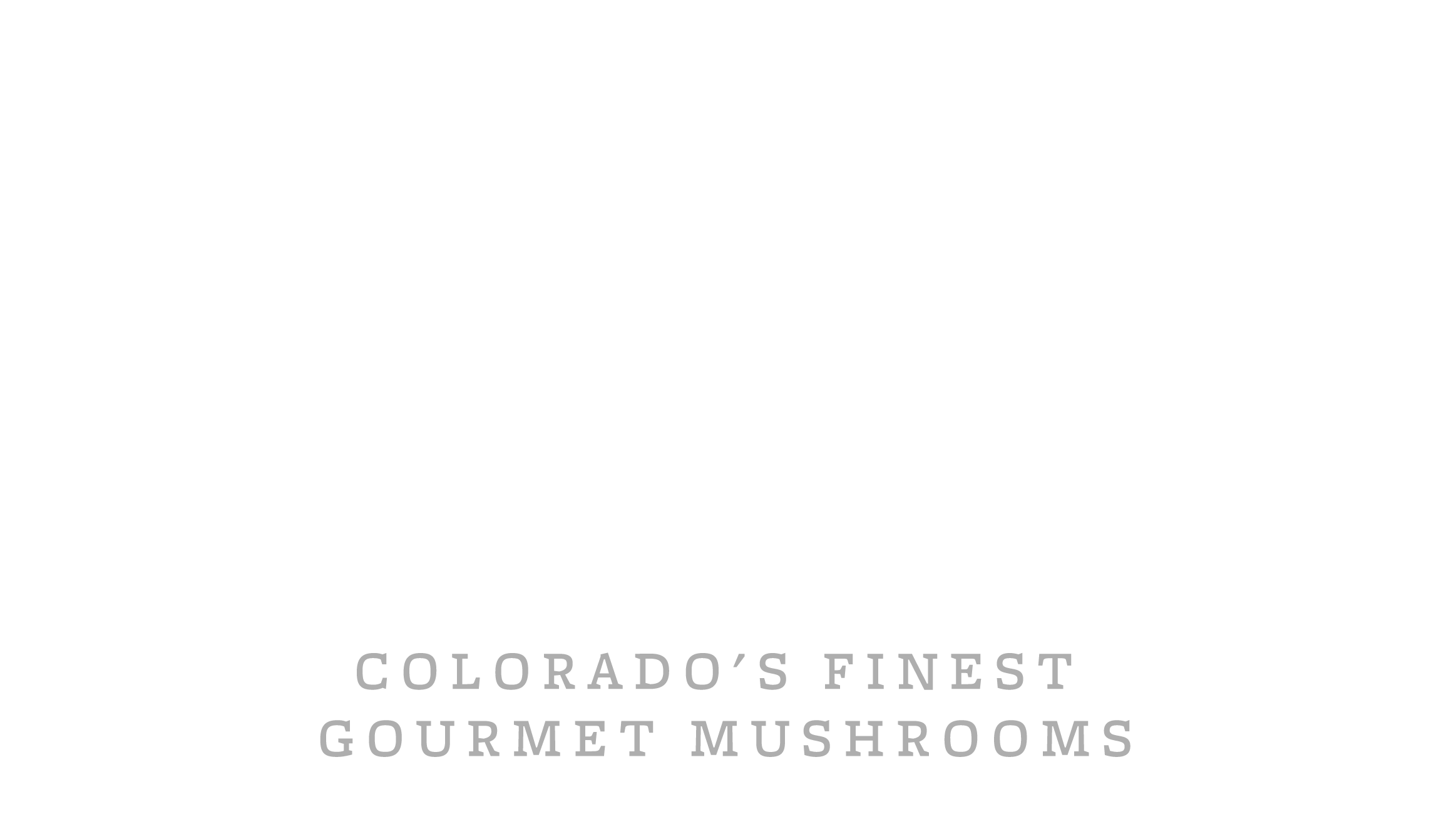 Mile High Funghi | Colorado's Finest Gourmet Mushrooms