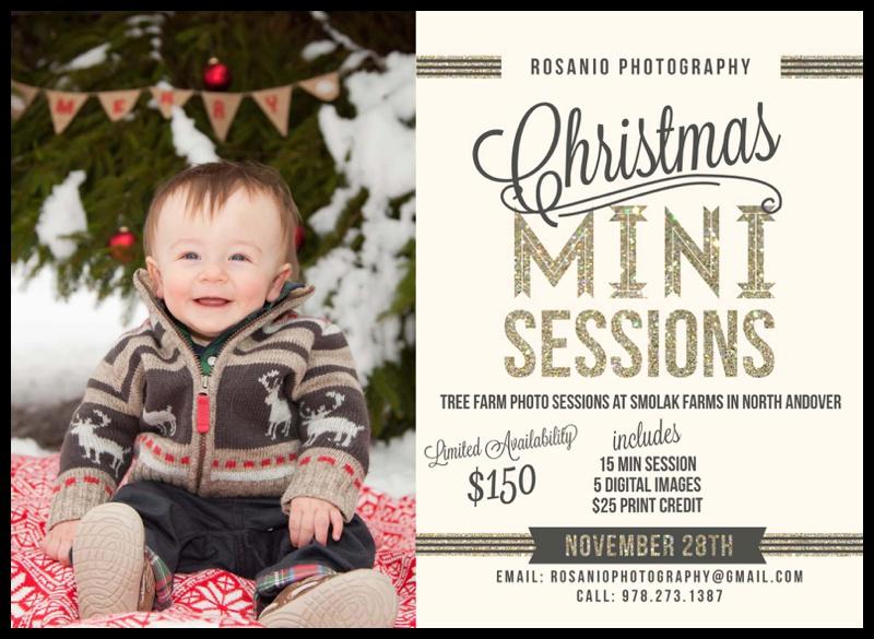 Rosanio Photograhy | Massachusetts Family Photographer